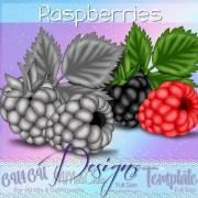 Raspberries Template